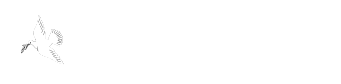 A CARING TOUCH NURSING & HOME CARE SERVICES INC.